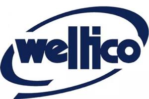 logo weltico